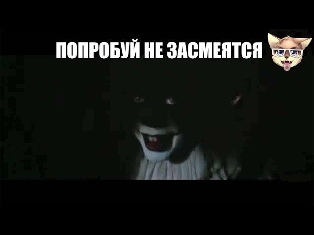 ТЕСТ НА ПСИХИКУ,КТО ЗАСМЕЕТСЯ ИЛИ УЛЫБНЕТСЯ - Ставит Лайк!