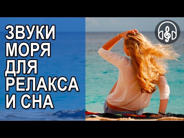 Ласкающие звуки черного моря, шум волны и крики чаек для сна и релакса