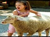 Alphabet games - Education - Games - Kids Videos - Children's TV Funny