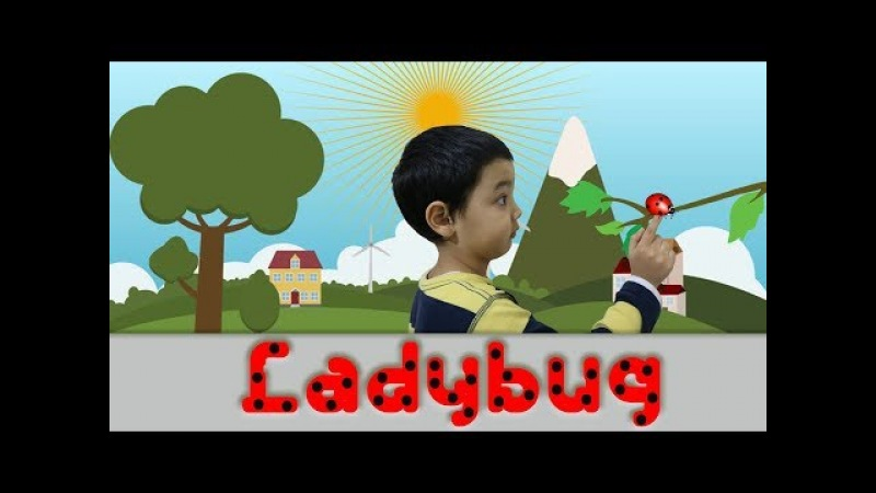 Making Ladybug from Paper for Kids