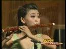 Chinese bamboo flute Three Variations on Plum Blossom 唐俊喬笛子演奏:梅花三弄