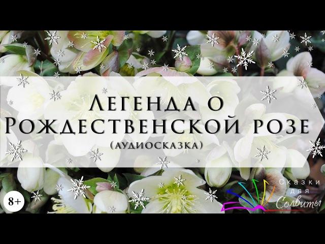 Легенда о Рождественской розе (Сельма Лагерлёф) / аудиосказка