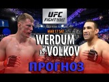 ПРОГНОЗ НА UFC FIGHT NIGHT 127.  Фабрисио Вердум против Александра Волкова.
