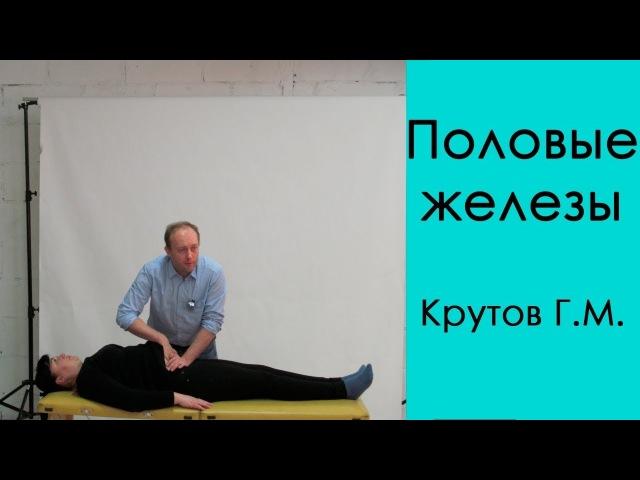 Семинар Григория Михайловича Крутова, Биохимия-2 Эндокринная система, кинезиология, фрагмент 2