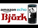 Amazon Echo: Björk Edition
