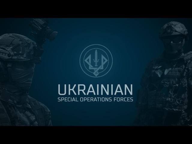 Ukrainian SOF International drills
