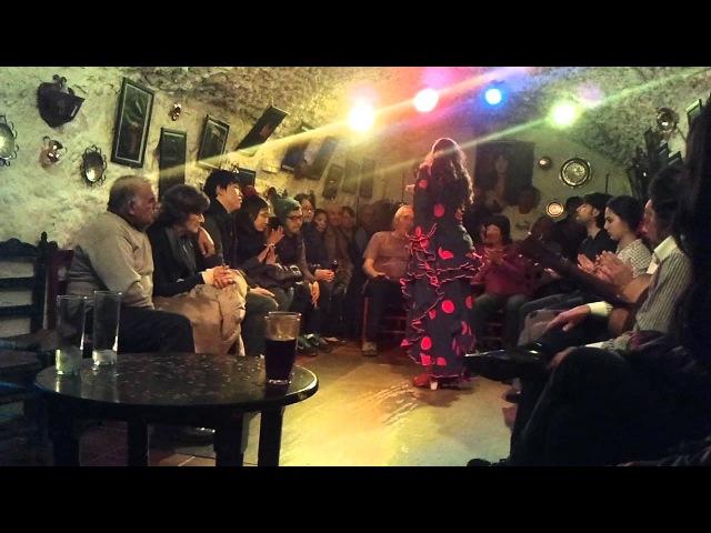 Flamenco Dance @ Cuevas Los Tarantos - Granada