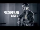 ED SHEERAN - PHOTOGRAPH (Alexandr Grechanik cover)