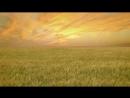 آهنگ جدید و زیبای مجنون بی لیلا New Iranian Song Majnoune Bi Leila