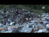 Экология Карелии теперь под дополнительным контролем