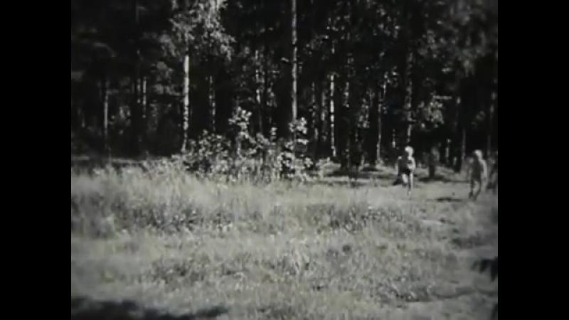 Охрана природы.1976г. CCCP. Леннаучфильм.