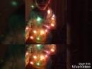 XiaoYing_Video_1518290981887.mp4