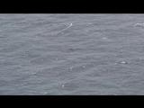 Helicopter_Door_Gunner_vs_Drone_-_Helicopter_Door_Gunner_Sh