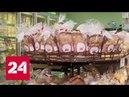 Продукты питания могут стать невозвратными Россия 24