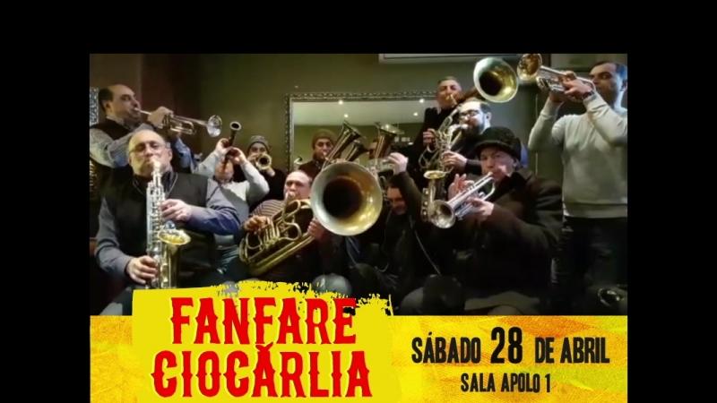 Barcelona: Fanfare Ciocarlia tiene un mensaje para ti
