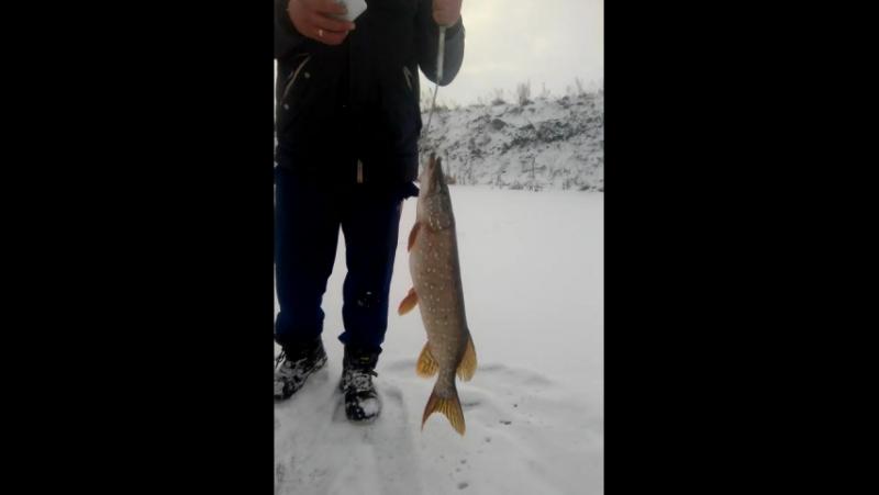 МоИ КоРеШа на лютой рыбалке