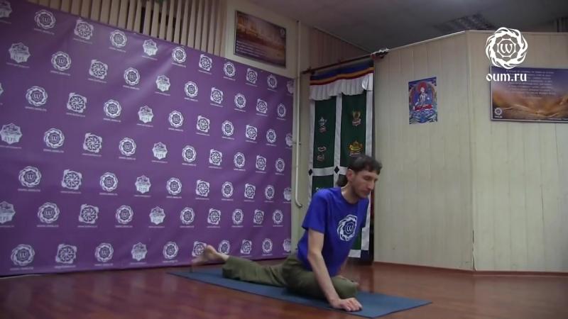 11.Йога для начинающих. Видео уроки. Практика Хатха-йоги - Комплекс 11 - А.Верба