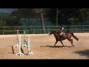 Jumping training. Three strides out and how your actions before them.(see more in description)