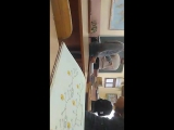 Данил Горностаев - Live