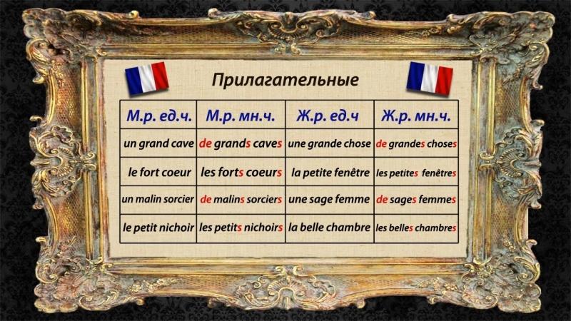 Французский язык. Урок 11. Множественное число прилагательных