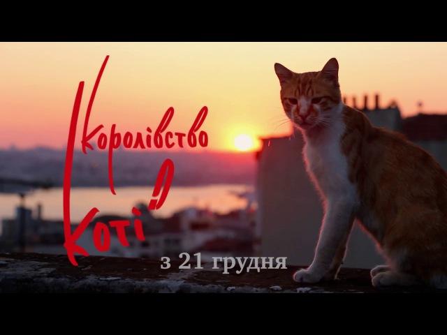 КОРОЛІВСТВО КОТІВ Український трейлер