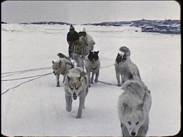 An InuitEskimo family in the Arctic 1959