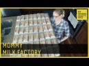 Mommy Milk Factory Breast Milk Donor 60 Second Docs