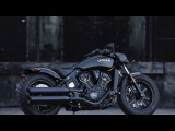 Indian Motorcycle unveils 177 Gold &amp Black Jack Daniel's Limited edition Scout Bobber models