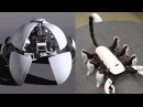 5 Wonderful Robots / Robotic Kits You will Intend to Buy - Best Robot Toys 14
