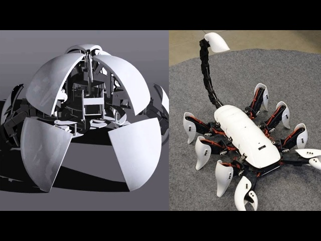 5 Wonderful Robots Robotic Kits You will Intend to Buy Best Robot Toys 14