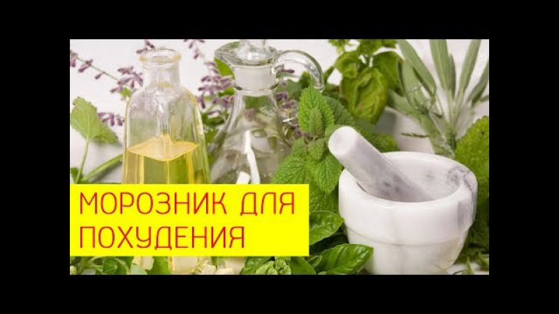 Морозник для похудения Использование морозника при похудении Галина Гроссма