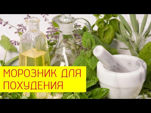 Морозник для похудения Использование морозника при похудении Галина Гроссманн