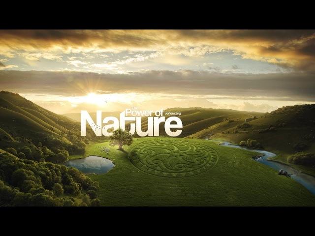 Vertera Organic - компания будущего, которая уже существует!