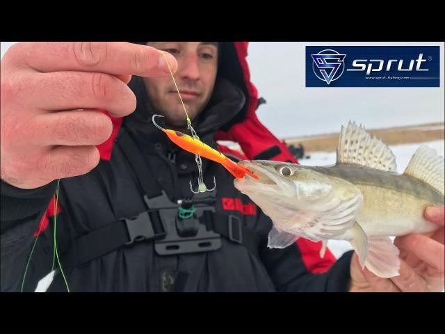 Ловля судака зимой на балансир SPRUT HIKO с эхолотом Практик. Kamfish