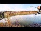 Новый омут ПОРАДОВАЛ уловом! .. Рыбалка на спиннинг. Поиск рыбы осенью