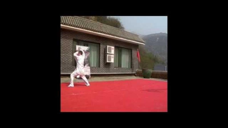 Liang-shi bagua - longxing zhang 梁式八卦龙形掌