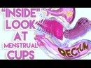 An Inside Look at Menstrual Cups