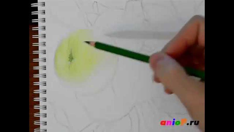 Рисуем зеленые яблоки цветными карандашами. Часть 3