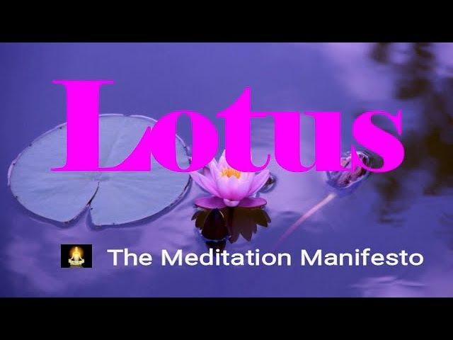 Lotus | Quick Sleep Music | Soothing | Meditation | Isochronic Tones