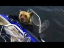 Необыкновенная охота и рыбалка. Приколы на охоте и рыбалке