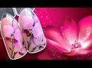 💅🌺 ОРХИДЕЯ 🌺💅 МАНИКЮР НА 8 МАРТА ВЕСЕННИЙ ДИЗАЙН ГЕЛЬ ЛАКОМ С ALEXPRESS ЦВЕТЫ НА НОГТЯХ CANNI