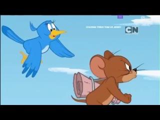 Tom and Jerry show-Chú chim nhại-Cartoon network[thuyết minh]