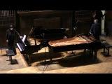 М. Равель Вальс для двух фортепиано, исп.Элисо Вирсаладзе и Дмитрий Каприн