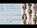 OpenCV for Python Developers | Overview of face and feature detection [vietSub]