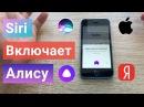 Яндекс АЛИСА как АКТИВИРОВАТЬ ГОЛОСОМ на айфоне на любом экране через Siri