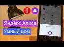 Яндекс Алиса и Умный Дом