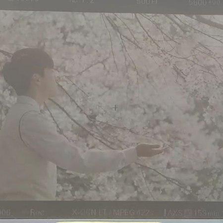 """🎬배우 남다름🍀🍀🍀 -엄마가 전해주는 이야기 on Instagram """"꽃비 끝나고 봄비....☔ 54868"""