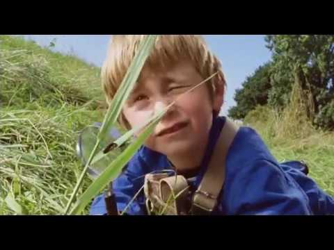 Petites bêtes et compagnie - FILM COMPLET VF