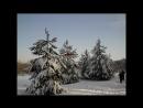 11 февраля 2018-Прогулка на Лыжах в Зимнем Лесу !