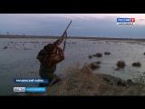 В Новосибирской области наступил последний день охоты на водоплавающую дичь